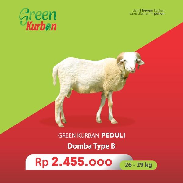 Green Kurban Peduli | Domba Type B