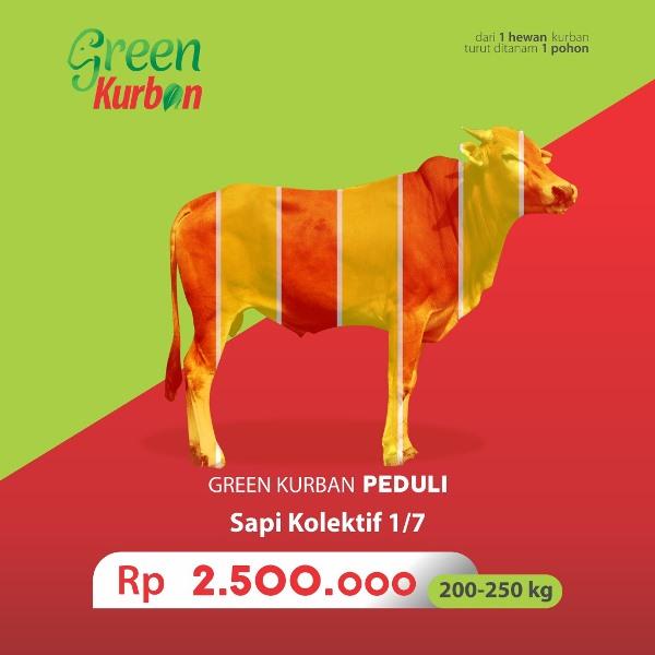 Green Kurban Peduli | Sapi Kolektif 1/7