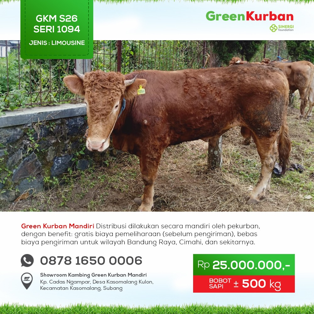 Green Kurban Mandiri | GKMS#1094