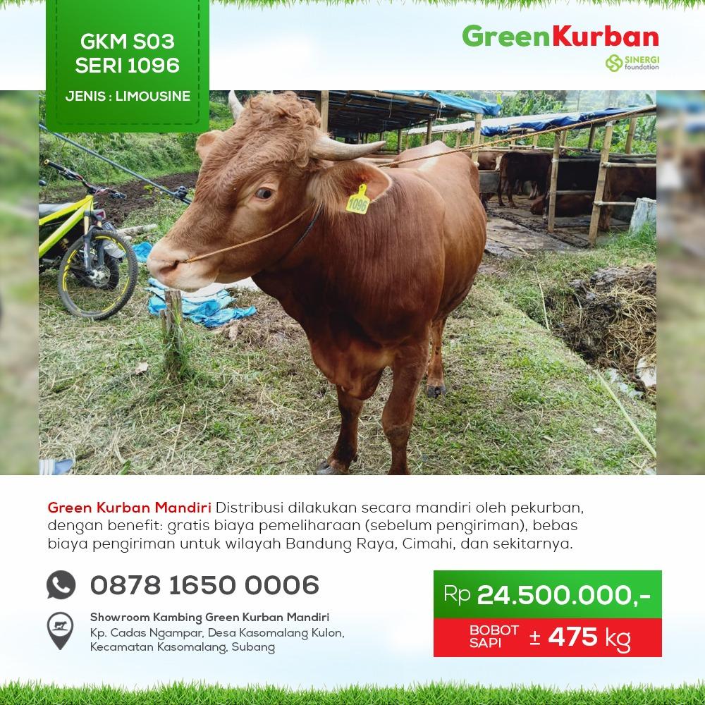 Green Kurban Mandiri | GKMS#1096