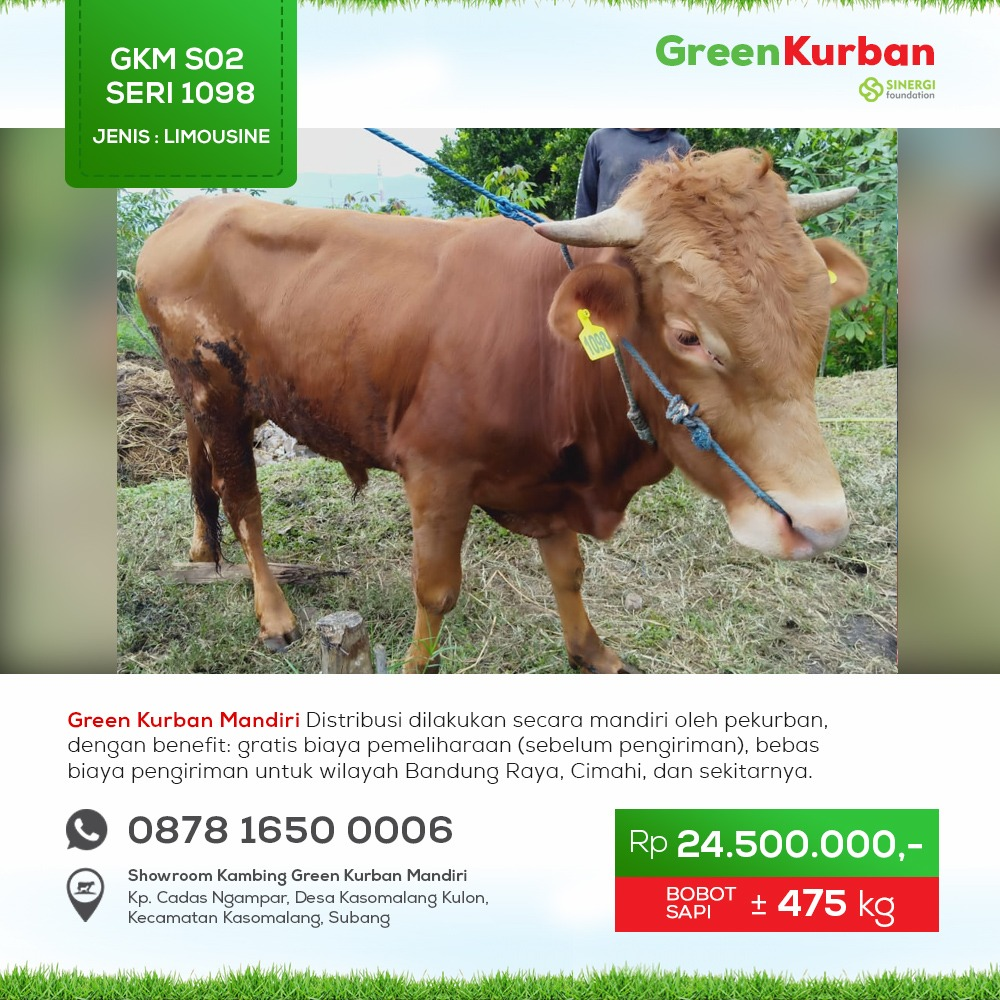 Green Kurban Mandiri | GKMS#1098