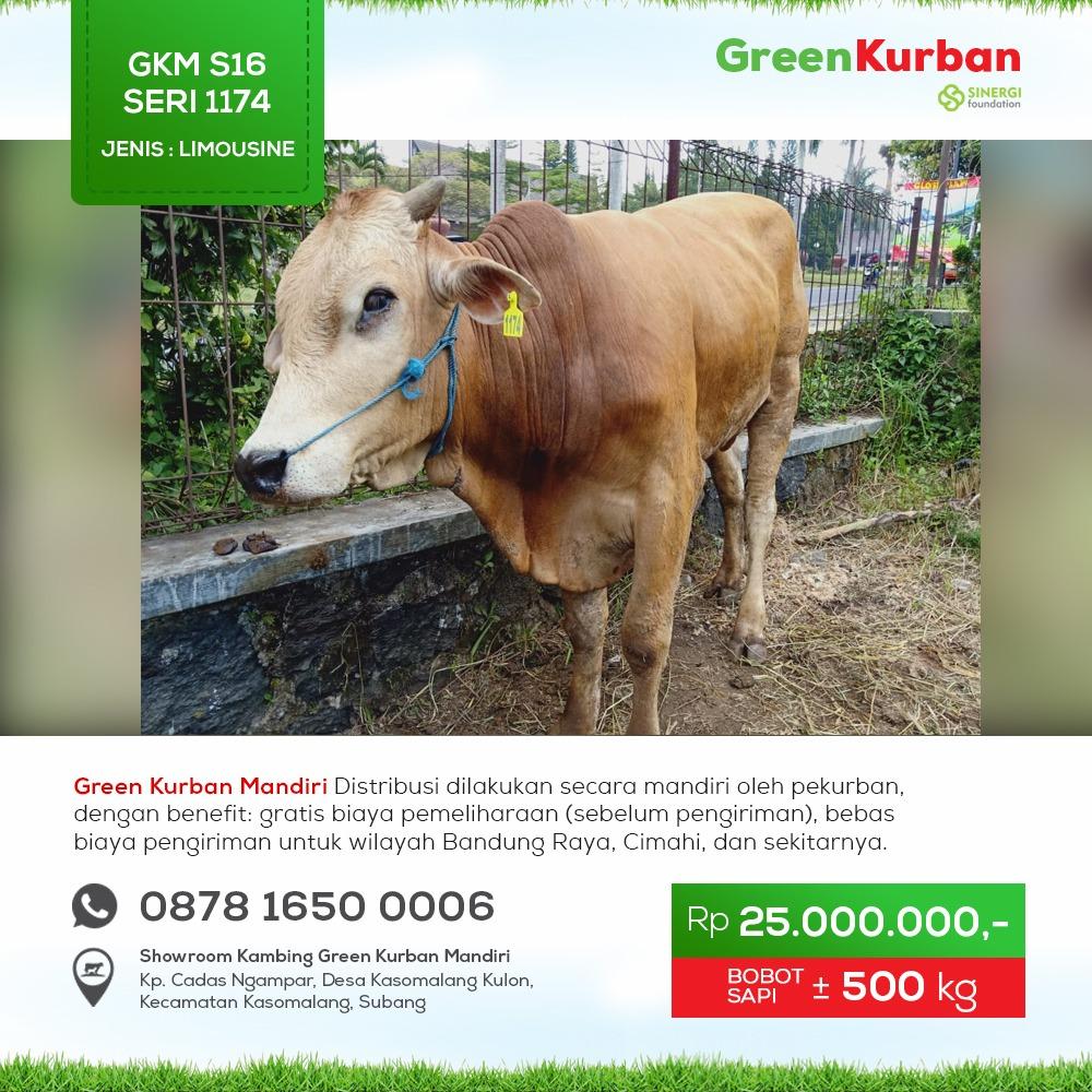 Green Kurban Mandiri | GKMS#1174