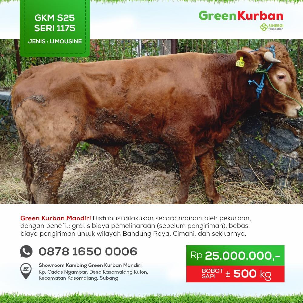 Green Kurban Mandiri | GKMS#1175