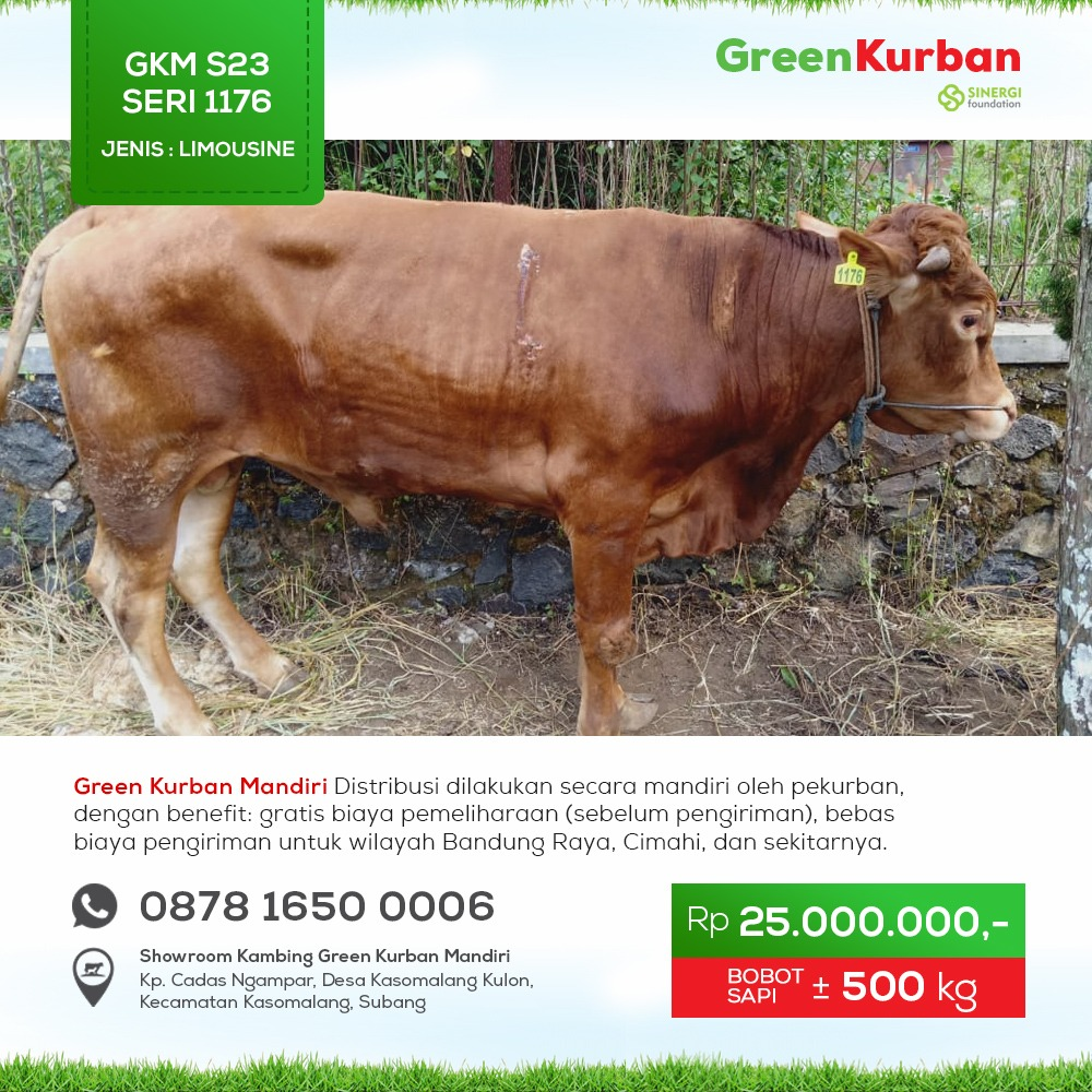 Green Kurban Mandiri | GKMS#1176