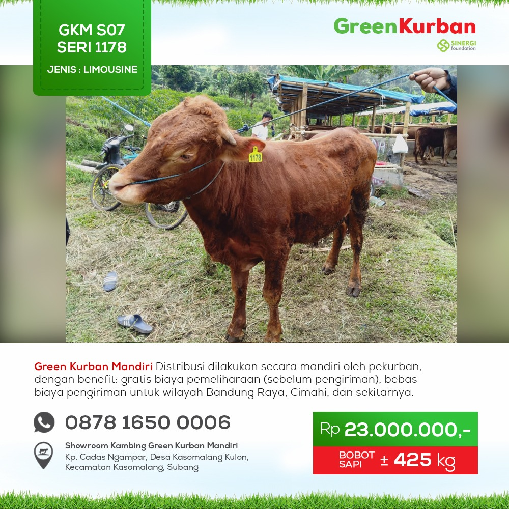 Green Kurban Mandiri | GKMS#1178