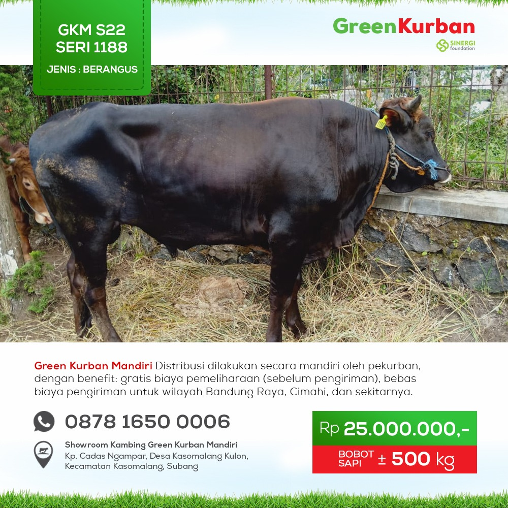 Green Kurban Mandiri | GKMS#1188