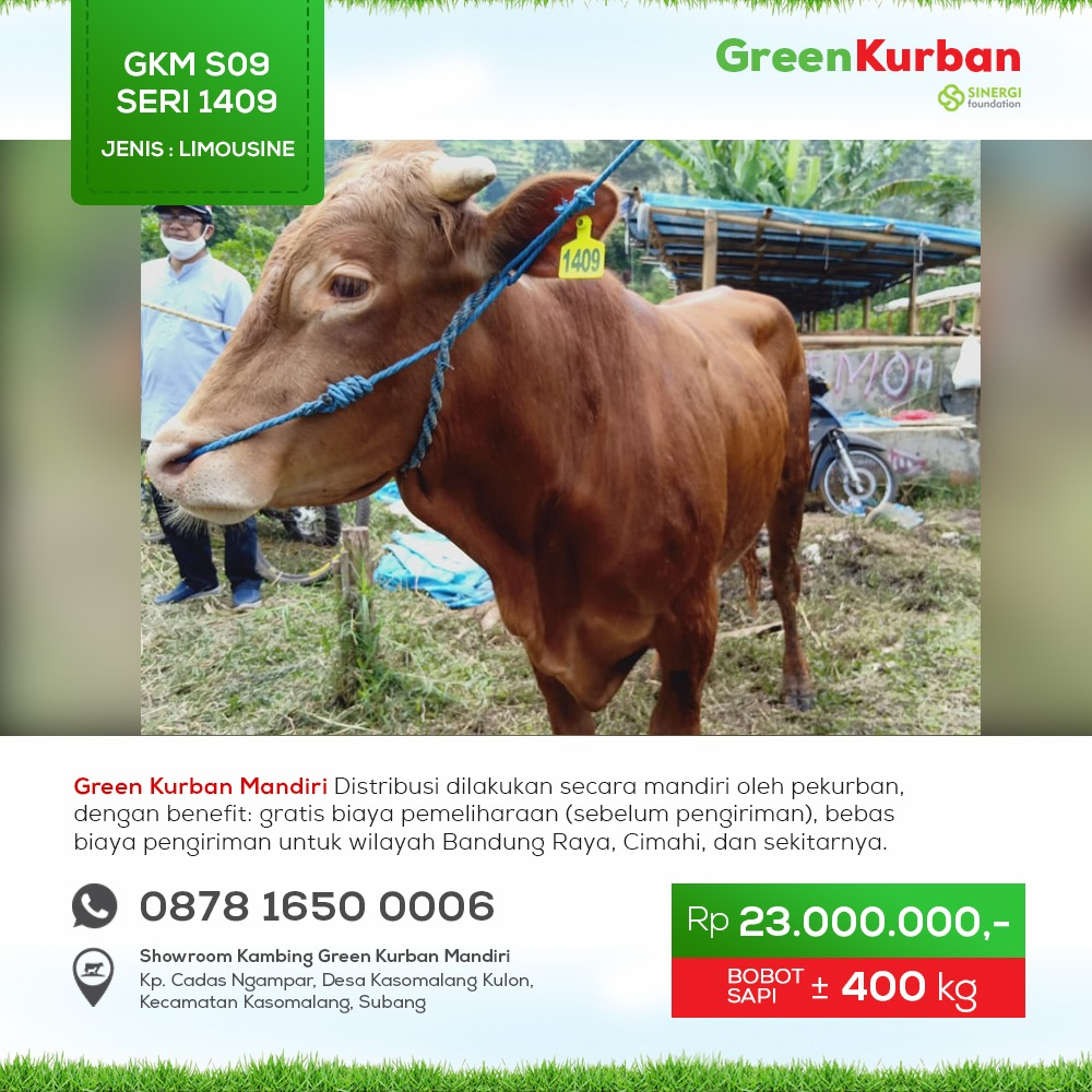 Green Kurban Mandiri | GKMS#1409