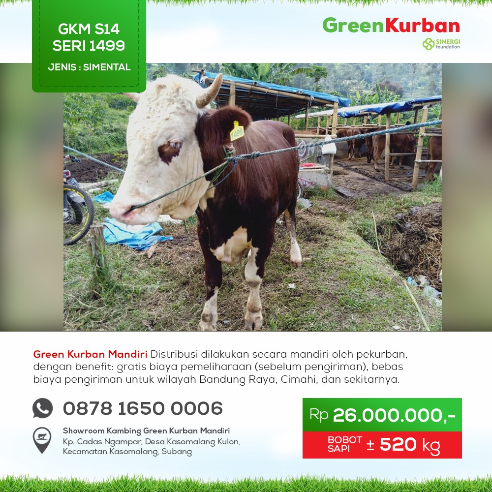 Green Kurban Mandiri | GKMS#1499