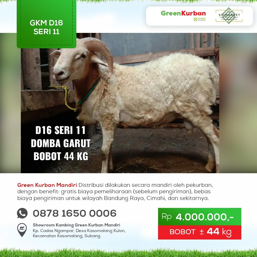 Green Kurban Mandiri | GKM#D16 Seri 11